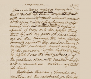 Mary Shelly Handwritten Notes for the Novel